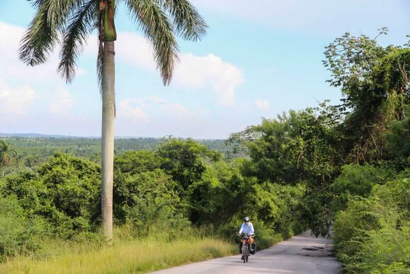 Grün und wenig Verkehr