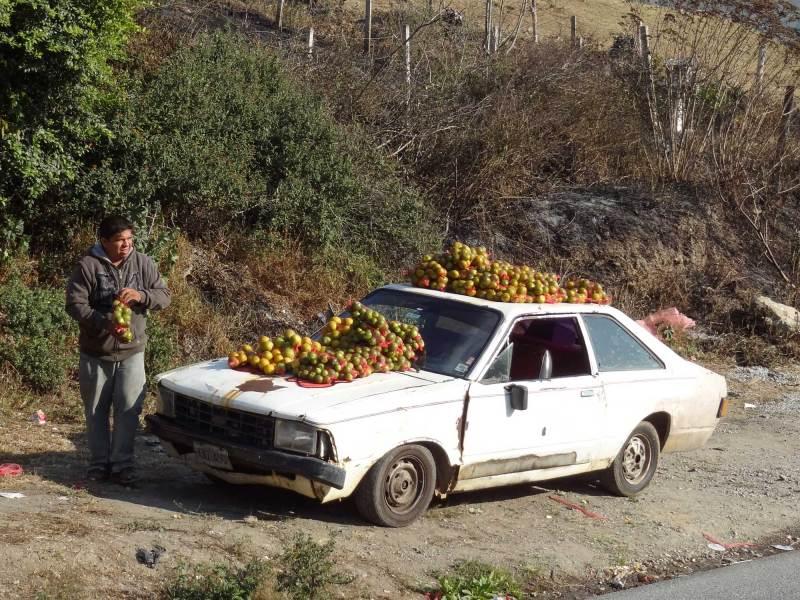 Mandarinen-Verkauf on the Road