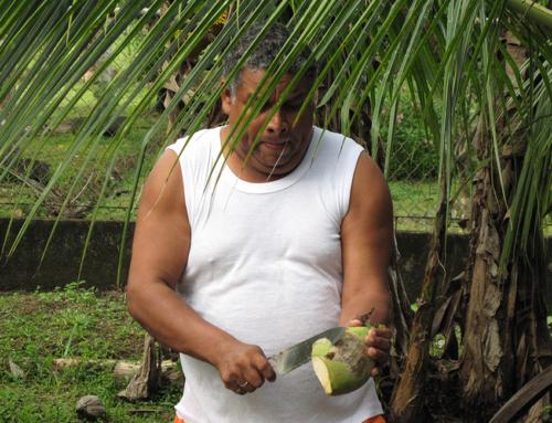 Puerto Limón – Granada; Pura Vida,Ticos, Nicas und Ometepe