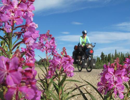 Inuvik – Dawson City – Whitehorse, wie war das jetzt mit dem Wind?