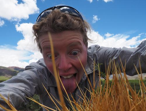 Uyuni – Salta, eine rabenschwarze Verschwörung